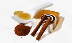 Очанка лекарственная: лечебные свойства и противопоказания. Трава очанка - применение в народной медицине
