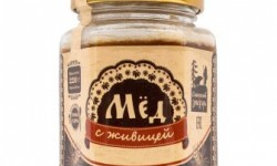 Мед с пергой: полезные свойства и противопоказания. Как приготовить и употреблять