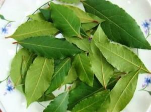 Лечение суставов лавровым листом