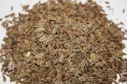 Семена укропа от запора: как применять, 2 рецепта