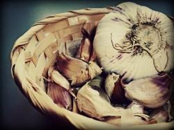 Чесночная шелуха – полезные свойства и противопоказания