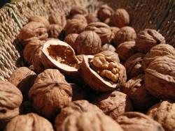 Грецуик орехи