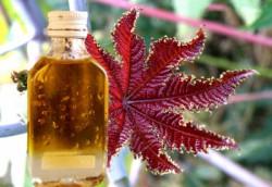 Внешний геморрой лечение масло касторовое
