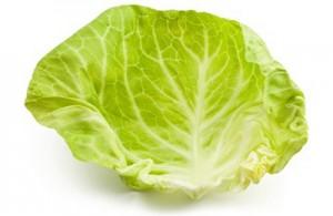 Лечение мастопатии капустным листом