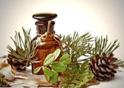Пихтовое масло при простуде и кашле