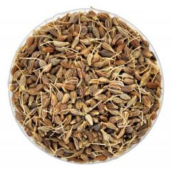 Семена аниса - лечебные свойства и противопоказания, применение в народной медицине